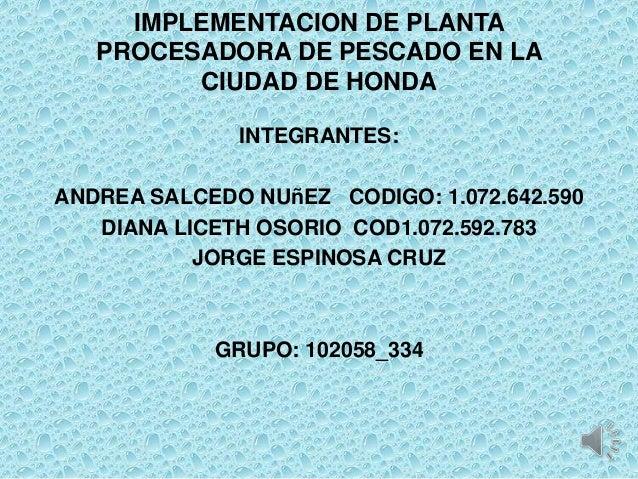 IMPLEMENTACION DE PLANTA   PROCESADORA DE PESCADO EN LA         CIUDAD DE HONDA              INTEGRANTES:ANDREA SALCEDO NU...