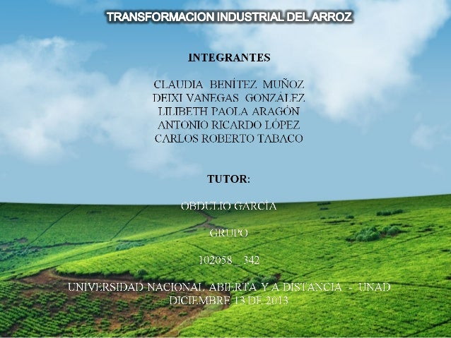 CONSUMO DE ARROZ EN COLOMBIA DESDE 2000 HASTA 2012 KG. Año 2000 2001 2002 2003 2004 2005 2006 2007 2008 2009 2010 2011 201...