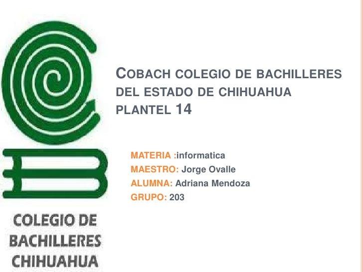 COBACH COLEGIO DE BACHILLERESDEL ESTADO DE CHIHUAHUAPLANTEL 14 MATERIA :informatica MAESTRO: Jorge Ovalle ALUMNA: Adriana ...