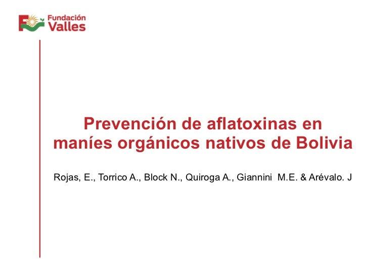 Prevención de aflatoxinas en maníes orgánicos nativos de Bolivia Rojas, E., Torrico A., Block N., Quiroga A., Giannini  M....