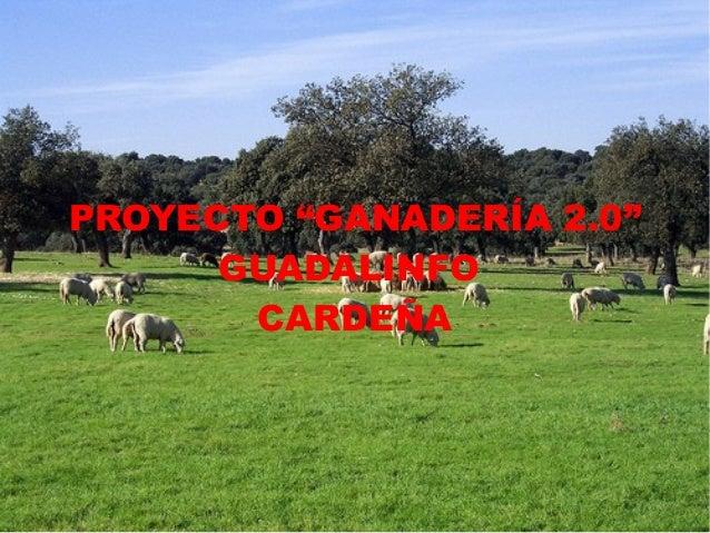 """PROYECTO """"GANADERÍA 2.0""""      GUADALINFO       CARDEÑA"""