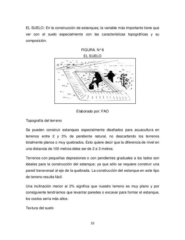 Proyecto de tilapia estudio realizado en la provincia de for Proyecto de tilapia en estanques