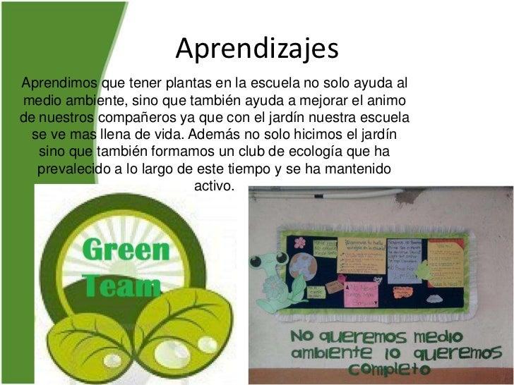 Proyecto jardin escolar for Proyecto jardineria