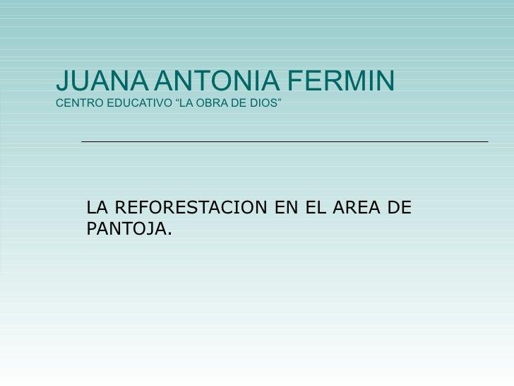 """JUANA ANTONIA FERMIN CENTRO EDUCATIVO """"LA OBRA DE DIOS"""" LA REFORESTACION EN EL AREA DE PANTOJA."""