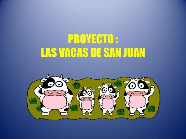 PROYECTO :LAS VACAS DE SAN JUAN