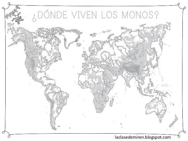 ¿DÓNDE VIVEN LOS MONOS? laclasedemiren.blogspot.com
