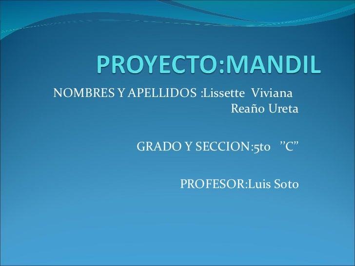 NOMBRES Y APELLIDOS :Lissette  Viviana  Reaño Ureta GRADO Y SECCION:5to  ''C'' PROFESOR:Luis Soto