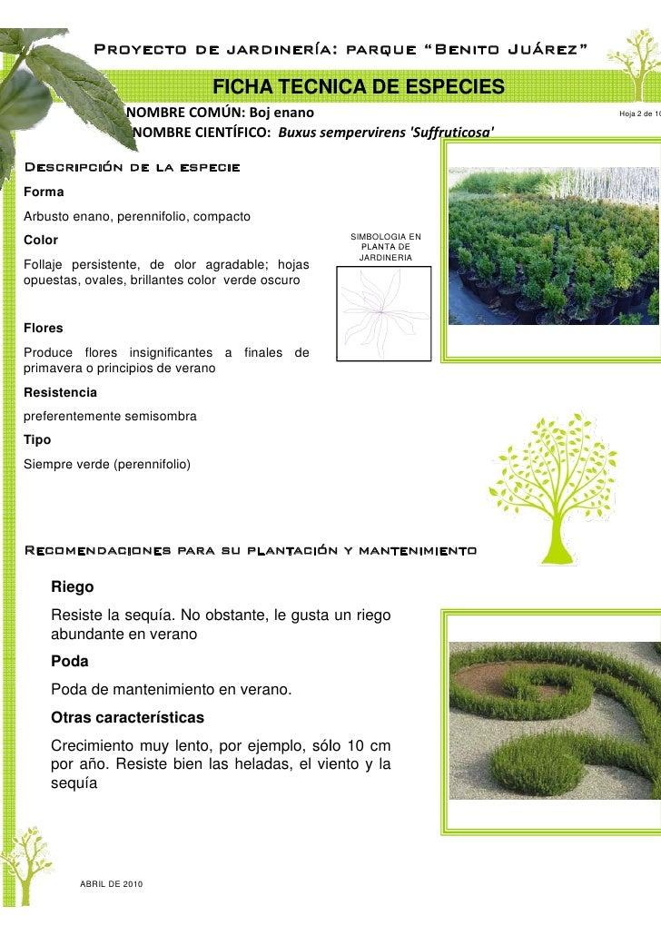 Proyecto de jardiner a parque ju rez ciudad del carmen for Proyecto jardineria