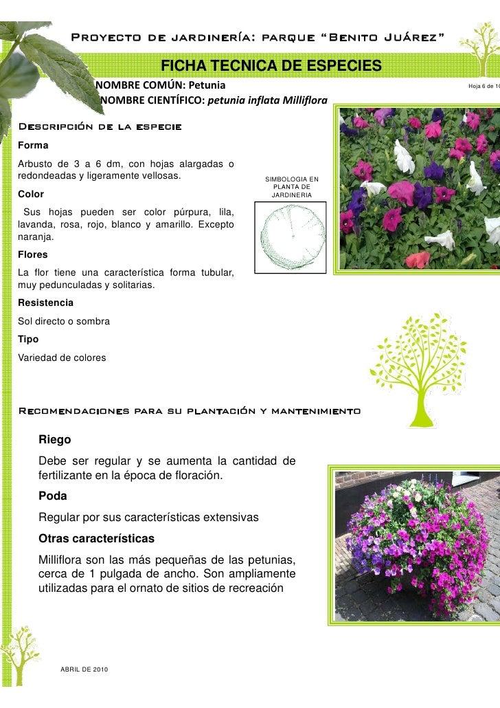 proyecto de jardiner a parque ju rez ciudad del carmen