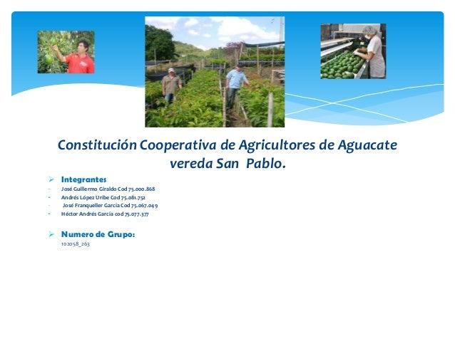 Constitución Cooperativa de Agricultores de Aguacate vereda San Pablo.  Integrantes José Guillermo Giraldo Cod 75.000.868...