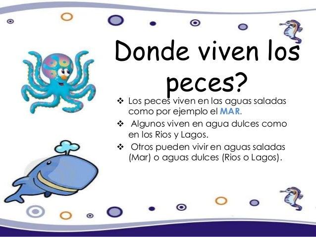 Proyectopedaggicoconociendoelmundomarino 121205140511 phpapp01 - Donde viven los acaros ...