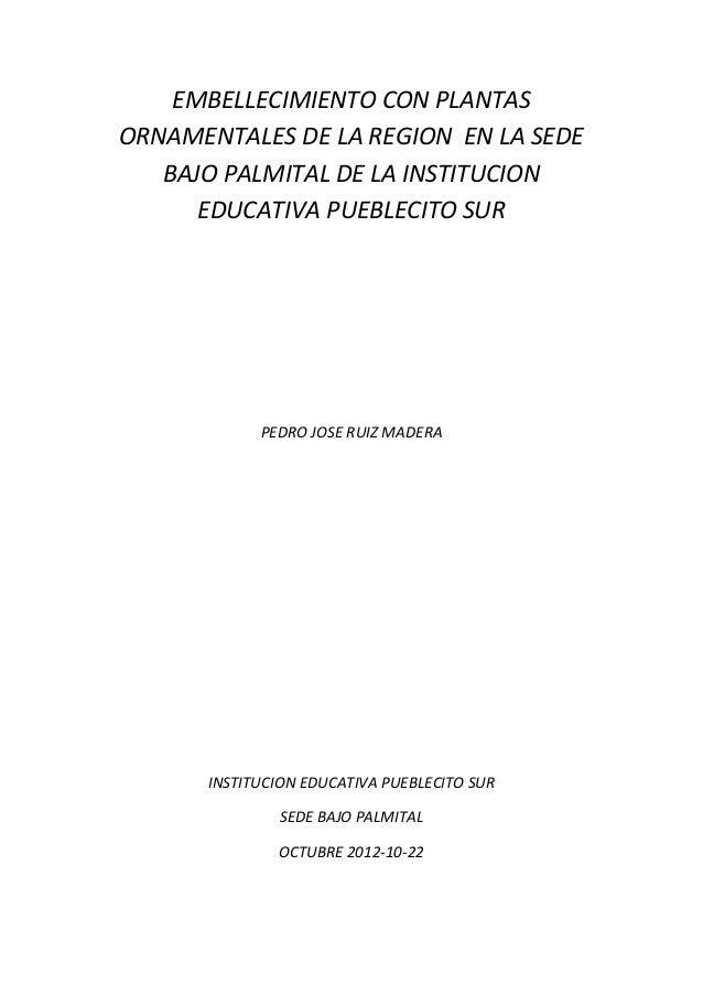 EMBELLECIMIENTO CON PLANTAS ORNAMENTALES DE LA REGION EN LA SEDE BAJO PALMITAL DE LA INSTITUCION EDUCATIVA PUEBLECITO SUR ...