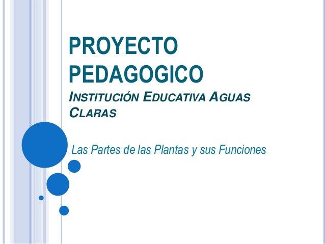 PROYECTO PEDAGOGICO INSTITUCIÓN EDUCATIVA AGUAS CLARAS Las Partes de las Plantas y sus Funciones