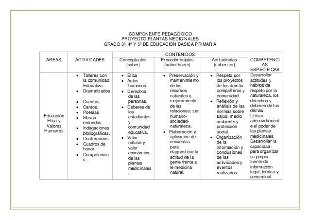 Proyecto educativo plantas medicinales for Funcion de un vivero escolar