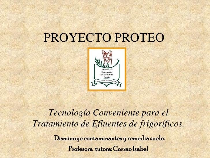 PROYECTO PROTEO         Tecnología Conveniente para el Tratamiento de Efluentes de frigoríficos.      Disminuye contaminan...
