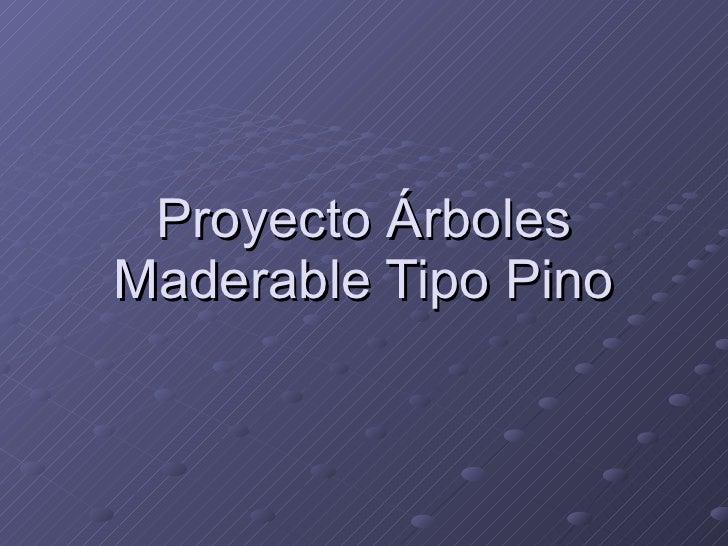Proyecto Árboles Maderable Tipo Pino