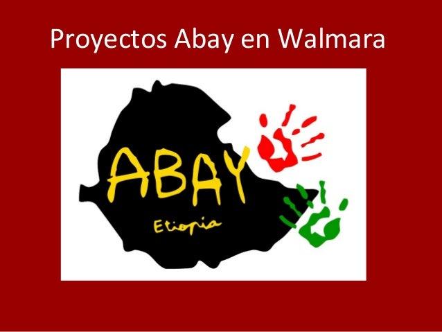 Proyectos Abay en Walmara