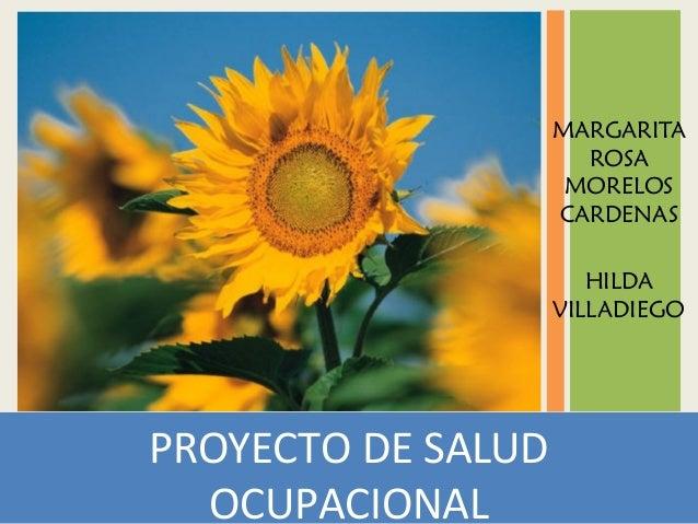 PROYECTO DE SALUD OCUPACIONAL MARGARITA ROSA MORELOS CARDENAS HILDA VILLADIEGO