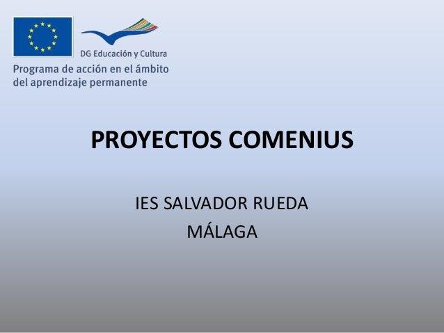 PROYECTOS COMENIUS IES SALVADOR RUEDA MÁLAGA