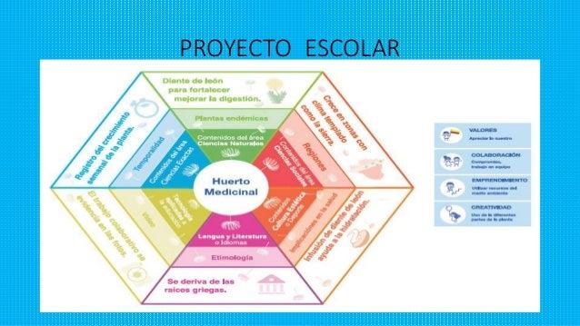 Proyectos Escolares 2015