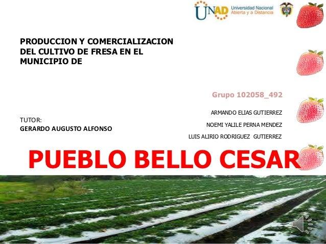 PRODUCCION Y COMERCIALIZACIONDEL CULTIVO DE FRESA EN ELMUNICIPIO DE                                       Grupo 102058_492...