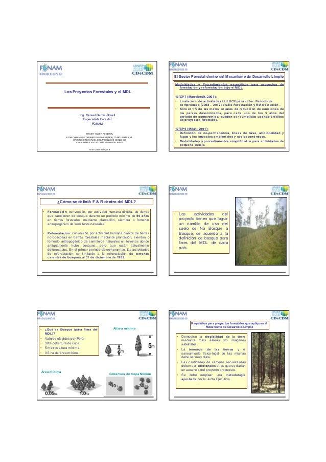 El Sector Forestal dentro del Mecanismo de Desarrollo Limpio  Los Proyectos Forestales y el MDL  Ing. Manuel García-Rosell...