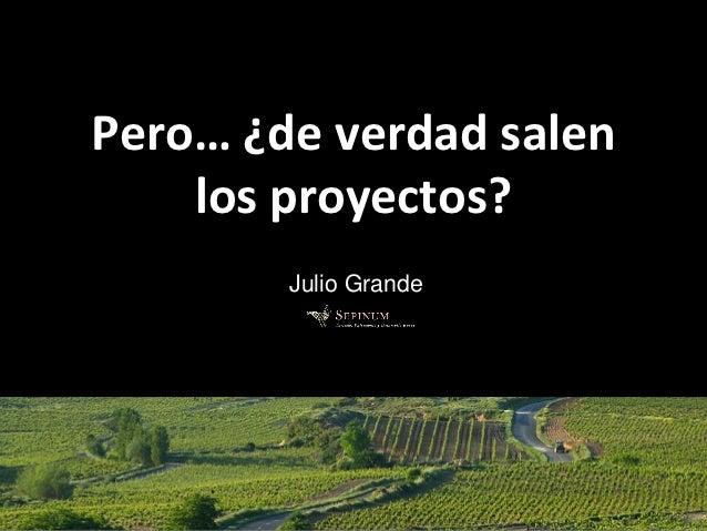Pero… ¿de verdad salen    los proyectos?        Julio Grande