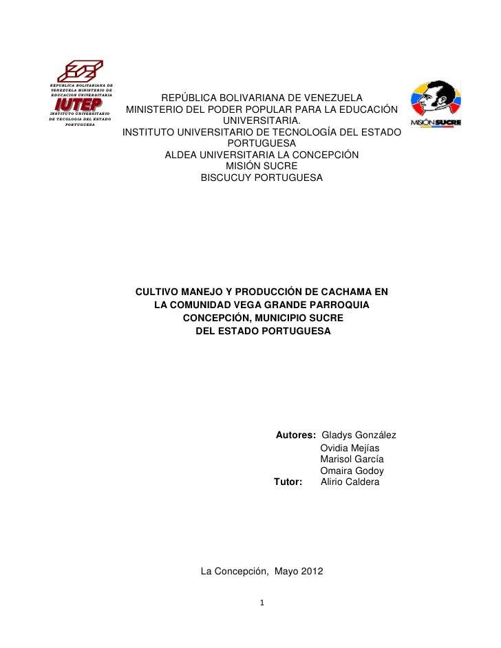 REPUBLICA BOLIVARIANA DEVENEZUELA MINISTERIO DEEDUCACION UNIVERSITARIA                                  REPÚBLICA BOLIVARI...