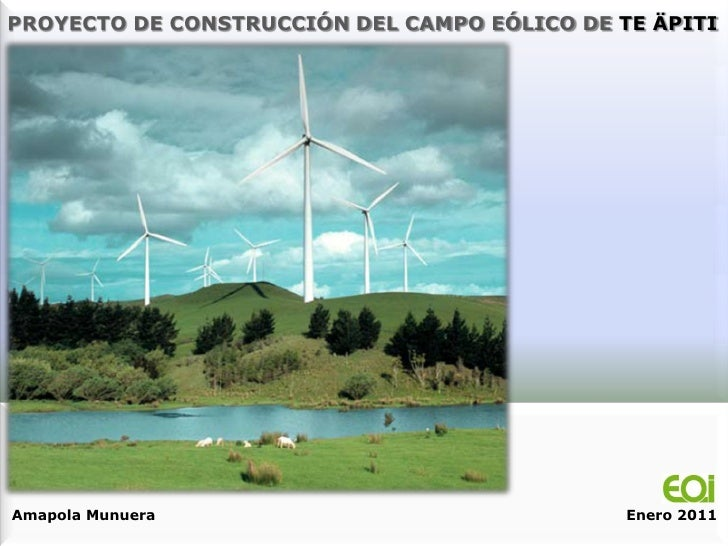 PROYECTO DE CONSTRUCCIÓN DEL CAMPO EÓLICO DE TE ÄPITIAmapola Munuera                               Enero 2011