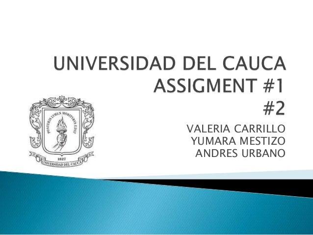 VALERIA CARRILLO YUMARA MESTIZO ANDRES URBANO