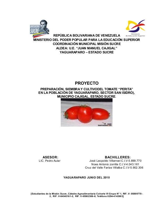 Proyecto preparaci n siembra y cultivo del tomate perita for Actividades de un vivero