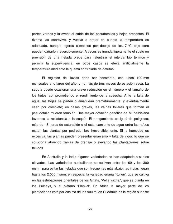 Proyecto trabajo julia - Con cuantos meses se puede abortar ...