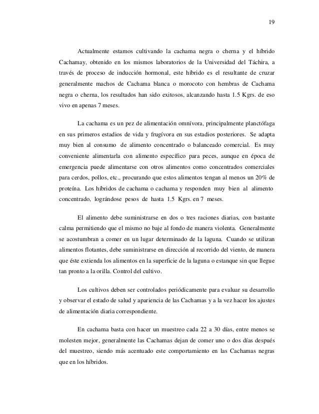 Proyecto unidad pisicola 5 for Alimento para cachamas