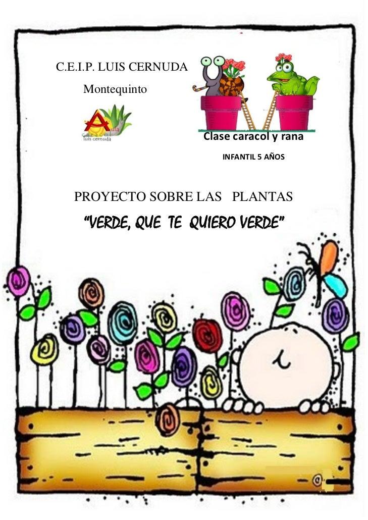 proyecto verde que te quiero verde derechos reservados