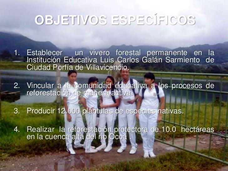 Proyecto vivero forestal institucional for Construccion de viveros forestales