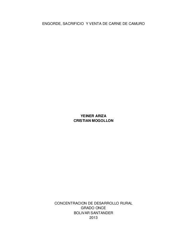 ENGORDE, SACRIFICIO Y VENTA DE CARNE DE CAMURO  YEINER ARIZA CRISTIAN MOGOLLON  CONCENTRACION DE DESARROLLO RURAL GRADO ON...