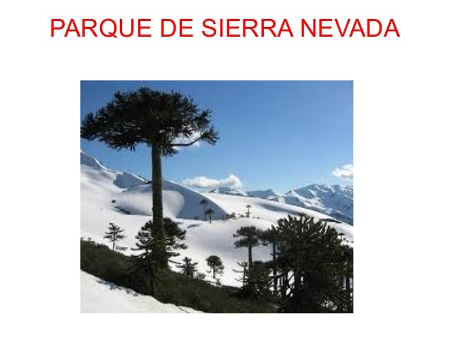 PARQUE DE SIERRA NEVADA