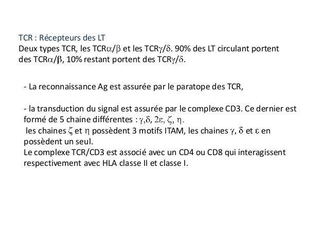 TCR : Récepteurs des LTDeux types TCR, les TCR / et les TCR / . 90% des LT circulant portentdes TCR / , 10% restant porten...