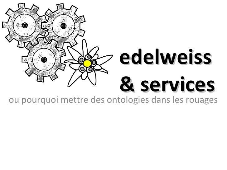 edelweiss & services ou pourquoi mettre des ontologies dans les rouages