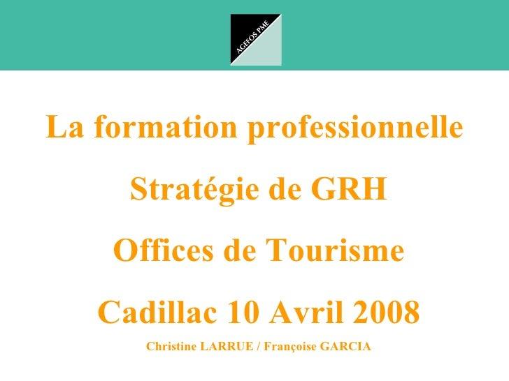 La formation professionnelle      Stratégie de GRH     Offices de Tourisme    Cadillac 10 Avril 2008       Christine LARRU...