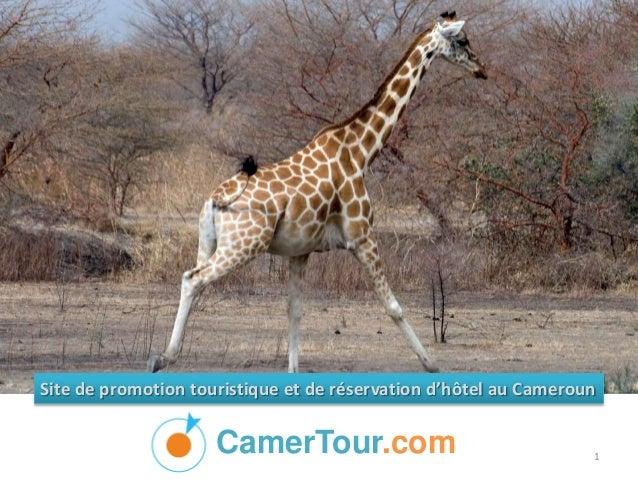 CamerTour.com Site de promotion touristique et de réservation d'hôtel au Cameroun 1