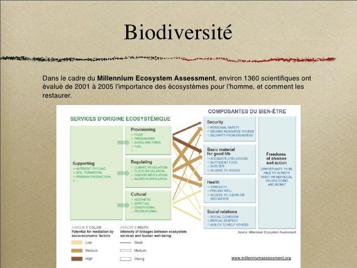 Biodiversité Dans le cadre du Millennium Ecosystem Assessment, environ 1360 scientifiques ont évalué de 2001 à 2005 l'impor...