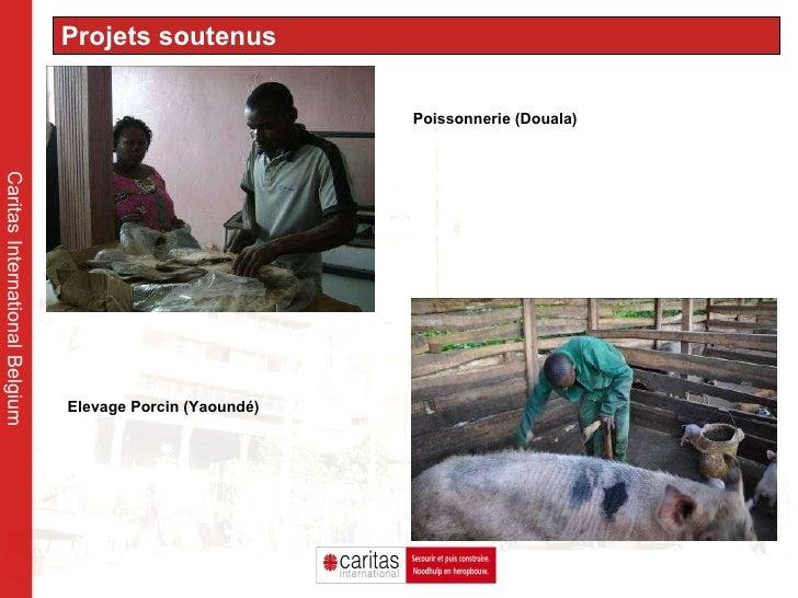 Caritas International Belgium Projets soutenus Poissonnerie (Douala)  Elevage Porcin (Yaoundé)