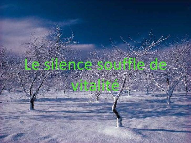 Le silence souffle de vitalité<br />