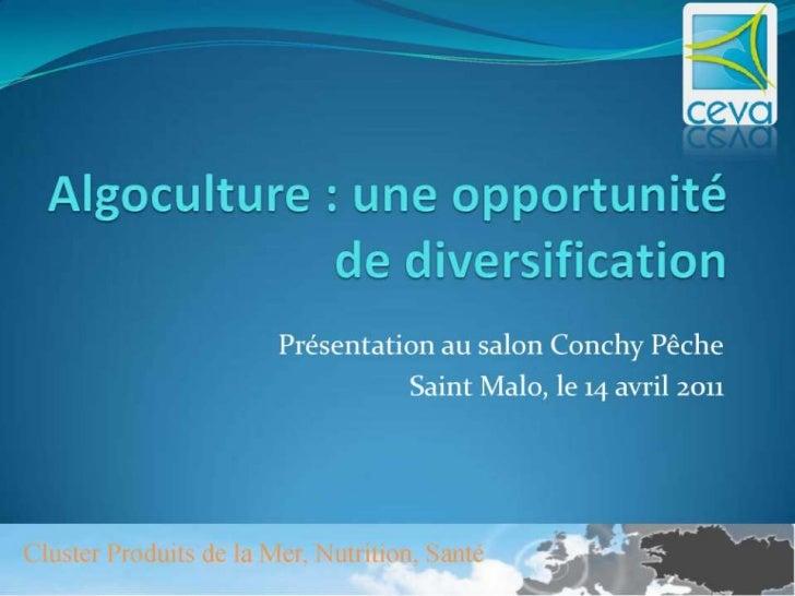 Algoculture : Une opportunité de diversification