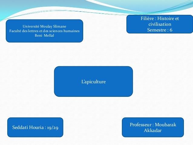 Professeur : MoubarakAkkadarSeddati Houria : 19/29Université Moulay SlimaneFaculté des lettres et des sciences humainesBen...