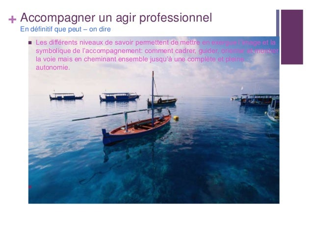 + Accompagner un agir professionnelEn définitif que peut – on dire Les différents niveaux de savoir permettent de mettre ...
