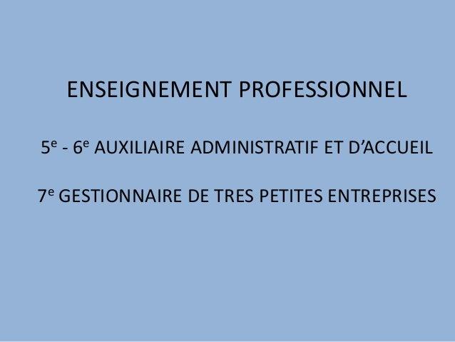 ENSEIGNEMENT PROFESSIONNEL 5e - 6e AUXILIAIRE ADMINISTRATIF ET D'ACCUEIL 7e GESTIONNAIRE DE TRES PETITES ENTREPRISES