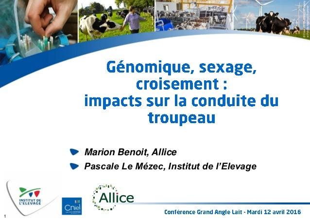 ©Cniel–L.Gueneau,C.Helsly etFotolia-MatthiasBuehner Marion Benoit, Allice Pascale Le Mézec, Institut de l'Elevage 1