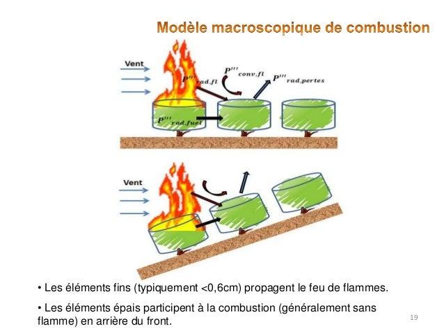 • Les éléments fins (typiquement <0,6cm) propagent le feu de flammes. • Les éléments épais participent à la combustion (gé...